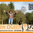 Learn Dutch Fast